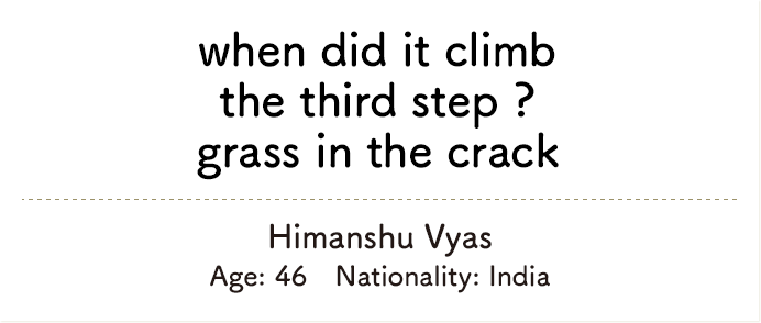 when did it climb the third step ? grass in the crack